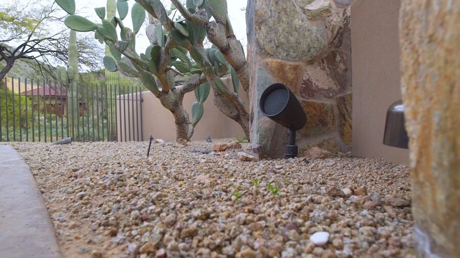 4 Rewards You'll Reap with a Landscape Speaker System